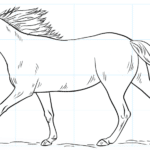 Cómo dibujar un caballo corriendo