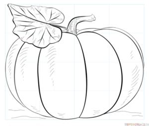 Cómo dibujar una calabaza