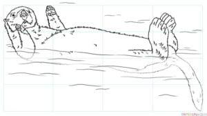 Cómo dibujar una nutria marina