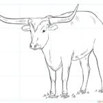 Cómo dibujar un cuerno largo
